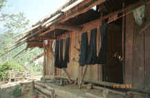 to Jpeg 30K Indigo dyed hemp cloth hanging out to dry in a Green Hmong village in Lai Chau province, northern Vietnam 9510g03.jpg (366114 bytes)
